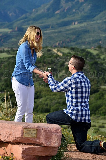 Steve and Kendra's Proposal