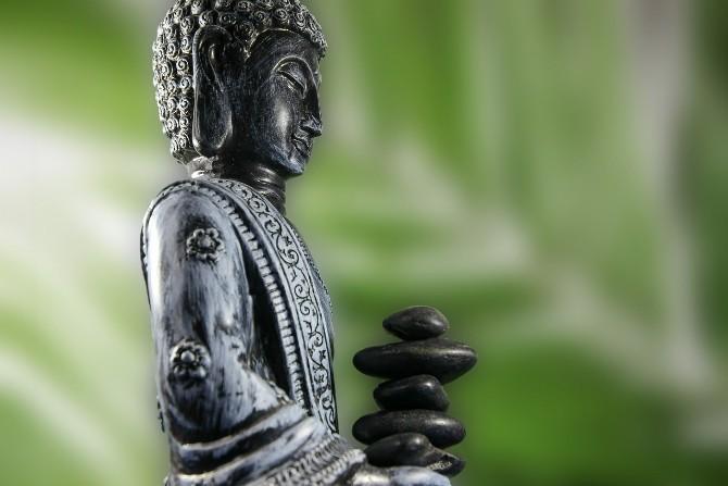 Third Eye Chakra Herbs