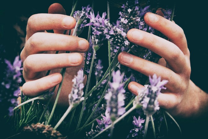 Meditate with Lavender
