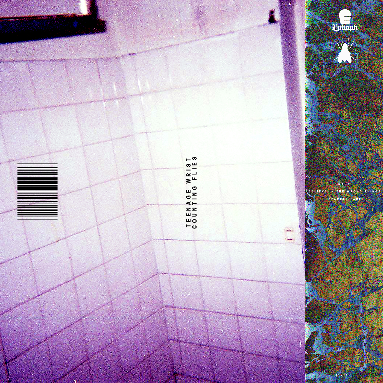 Counting Flies album art