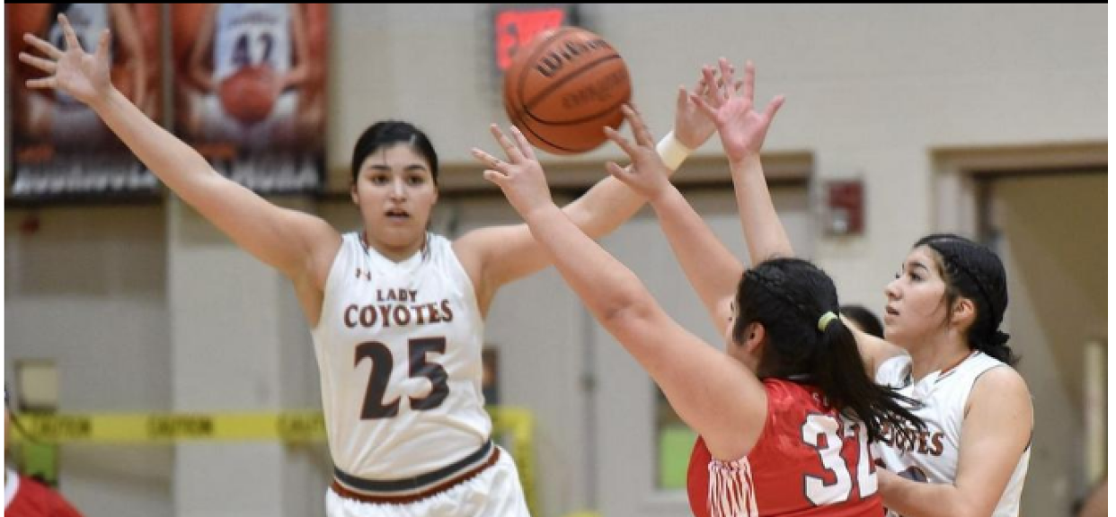 Lady Coyotes at Home in First Round of Playoffs