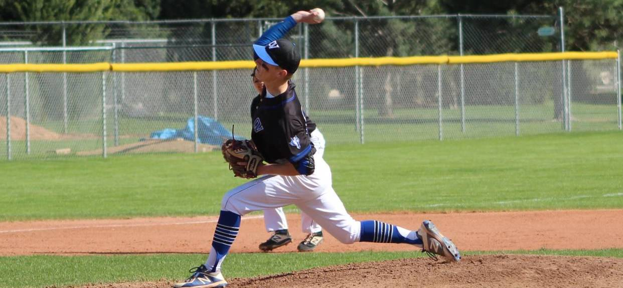Baseball advances to State play in game