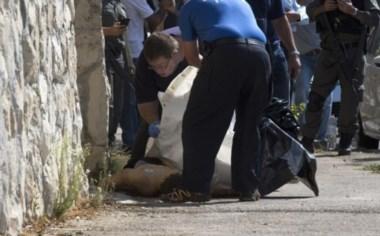 Mueren tres adolescentes palestinos al atacar a israelíes.