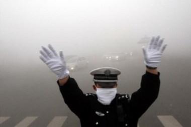 ¡Arriba las manos!, esta es una emergencia ambiental...