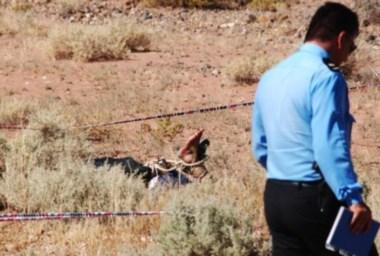 Personal policial recorre la zona donde encontraron el cadáver, que estaba a unos diez metros de la ruta, entre Huincul y Añelo. (Foto: Fernando Ranni- Río Negro)