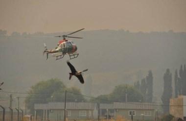 El hombre fue rescatado por un helicóptero chileno que estaba recorriendo la zona afectada.
