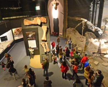 Durante el recorrido los visitantes podrán informarse en el stand de la Universidad del Chubut sobre la nueva Tecnicatura en Paleontología.
