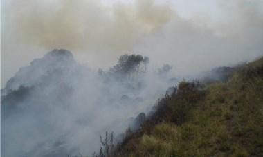 Humo y fuego. El incendio afectó varias hectáreas de matorrales y pinos típicos de la zona que bordea el barrio Badén, sobre ese cordón.