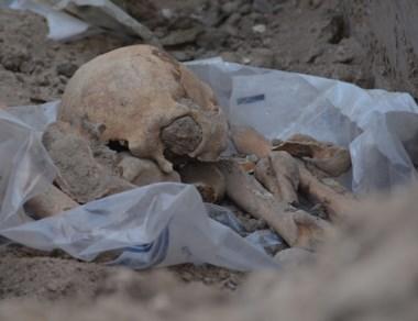 Un cráneo y diversos otros huesos fueron retirados para su análisis.
