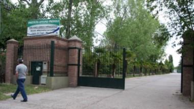 El Instituto Antonio Próvolo, lugar donde fueron abusados niños sordomudos, también habrían violado a los perros del lugar.