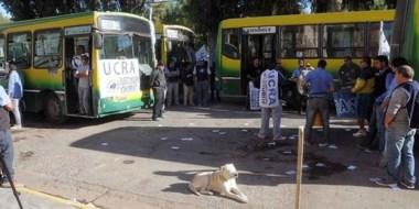 Entre perros. Los trabajadores volvieron a reclamar en las puertas del edificio municipal de Madryn.