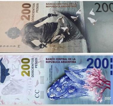 Billete polémico. Aseguran que el diseño de la ballena no estará en los 200 pesos y será reemplazado.
