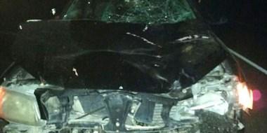 Colisión. El automóvil sufrió importantes roturas tras chocar contra el animal sobre la ruta nacional 25.