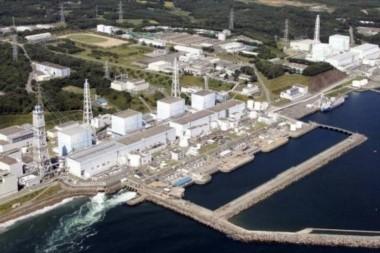 La fatídica central atómica y sus descargas radiactivas al mar.
