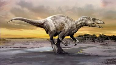 El dinosaurio medía alrededor de seis metros de largo (imagen CENPAT/CONICET)