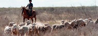 """Desde la entidad rural de Chubut aseguraron que se sienten """"más cómodos"""" con los reintegros."""