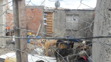 La casa donde ocurrió el crimen (foto Guadalupe Acre @Lupe_Acre)