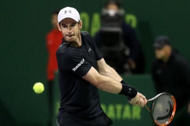 Murray eliminó a Berdych y volverá a jugar una final ante Djokovic.