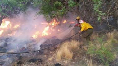 """Las autoridades locales advirtieron que los campos arrasados por el fuego """"tardarán entre cuatro y cinco años"""" en recuperarse."""