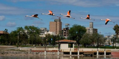 """La actividad se desarrollará en el marco de la """"3ª Semana Provincial de las Aves""""."""