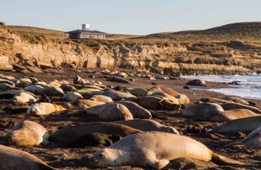 El lugar se encuentra a 170 km de Puerto Madryn y tiene todas las comodidades.