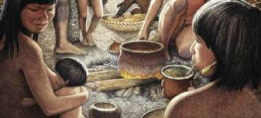 Reconocida por su calidad y cotizada con un mejor precio que la yerba común, la Ilex dumosa era la preferida durante la época de los conquistadores españoles.