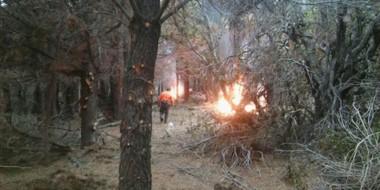 Postal. El fuego no paró durante una semana y produjo la incineración que afectó árboles y arbustos.
