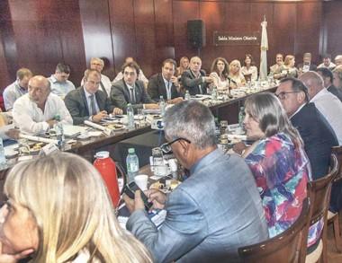 Hernández concurrió a la reunión del Concejo Federal de Salud.