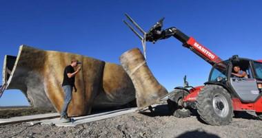 El gigante fue traído desde Hamburgo en barco y  el cuerpo del dinosaurio ya va tomando forma.