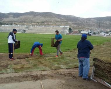 Trabajos en el estadio Municipal. Se instaló césped en panes para ampliar la superficie del campo.