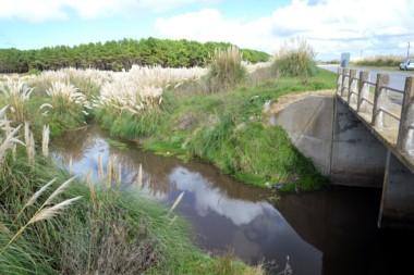 El cuerpo mutilado de un niño de entre 1 y 2 años fue hallado cerca de un arroyo ubicado a la vera de la ruta 11, entre las la localidades balnearias de Miramar y Mar del Sud.