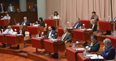 Nuevos. Martín Sterner y Damián Biss son los dos elegidos para poder ocupar el lugar como secretarios.