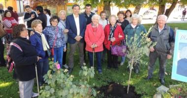 """Al finalizar el acto en Lago  Puelo, en la plaza plantaron un olivo """"por la paz, la tolerancia y la justicia""""."""
