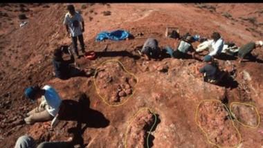 El sitio Auca Mahuevo, donde fueron hallados las nidadas con huevos de dinosaurios,  tiene más de 70 millones de años.