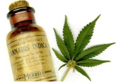 Los padres reseñaron que su hijo sufre entre 100 y 200 convulsiones diarias y le suministraron aceite cannabis , tras lo que observaron mejoras notarias en su salud.