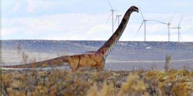 La Fech pide tener en cuenta a la Patagonia por ser la región de mayor recurso eólico del país.