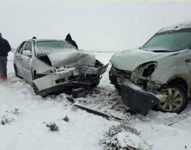 En medio de la escena cubierta de nieve, Gendarmería debió colaborar en salvaguarda de una mujer.