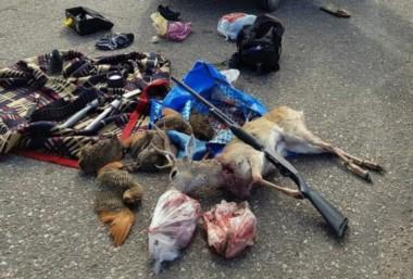 El venado de la Pampa, yace muerto junto a perdices y otros animalitos.