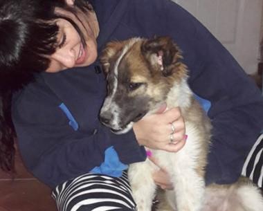 Esta es la primera perra rescatada , hace días,de manos del sujeto.