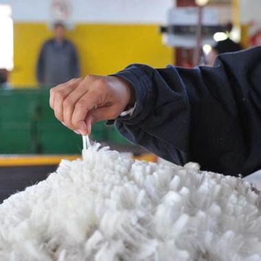 Diferenciación. La lana se ha transformado en un producto premium