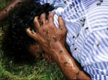 Varias personas entre ellos niños, fueron atacados por un enjambre de abejas cuando participaban de un sepelio. (Archivo).