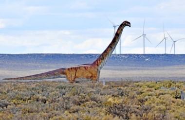 Se conocerá a través de una publicación internacional cuál es el nombre del saurópodo.