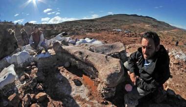 El titanosaurio hallado en Chubut tiene nombre oficial: se llamará Patagotitan mayorum.