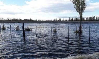 La postal corresponde a uno de los campos de la zona de Sarmiento luego de las inundaciones causadas en el mes de abril.