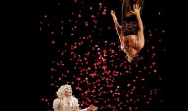 La obra incluye  teatro del absurdo, acrobacias y  música en vivo.