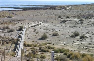 Se realizará un acto en el ingreso al Área Natural Protegida, sede de una colonia de pingüinos de Magallanes.
