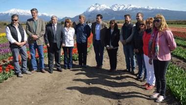 El acto de lanzamiento de la temporada se llevó a cabo en el campo de tulipanes en Trevelin.