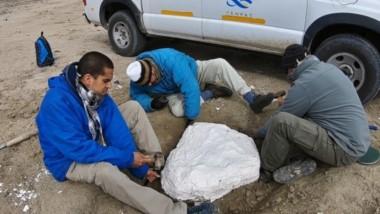 Los técnicos del Cenpat-Conicet trabajando en el lugar.
