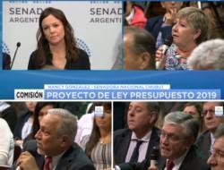 La ministra Stanley y la senadora González (arriba). Los senadores Romero y Pais (abajo).