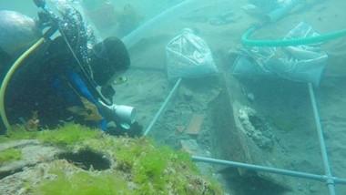 El trabajo de los buzos es constante en las aguas del Golfo Nuevo en búsqueda de los naufragios.